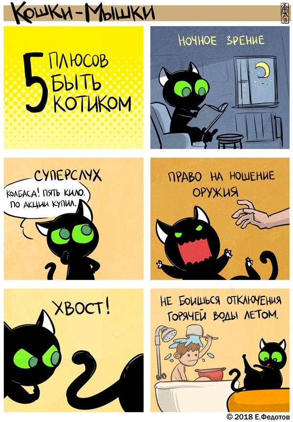 Кошки-мышки, комиксы, картинки, юмор