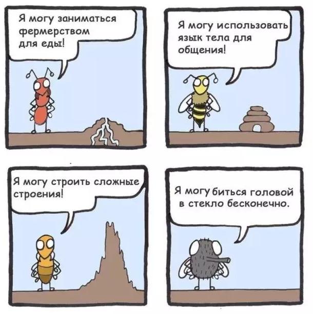картинки, прикольные картинки, комикс, муравей, пчела, термит, муха
