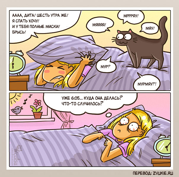 комиксы, catsu