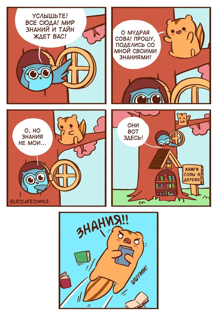 Cat's cafe, комиксы, знания