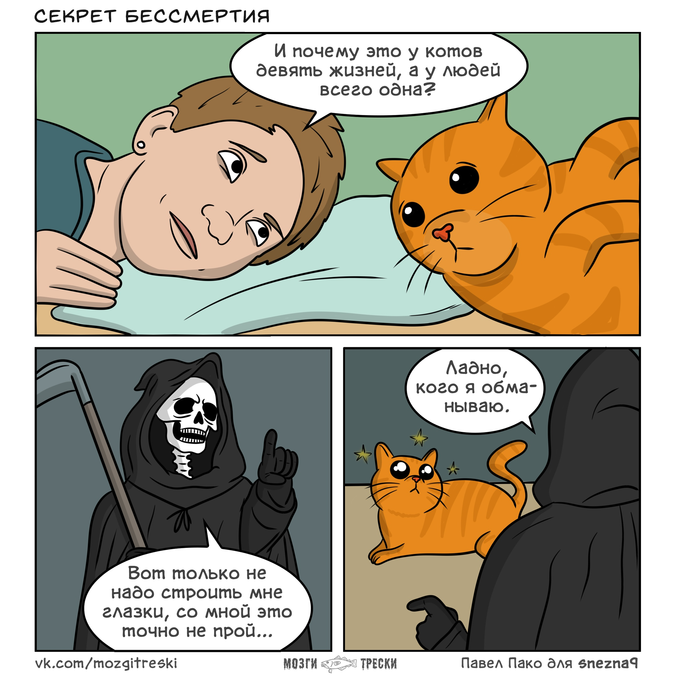 Мозги трески, комиксы, смерть, котэ